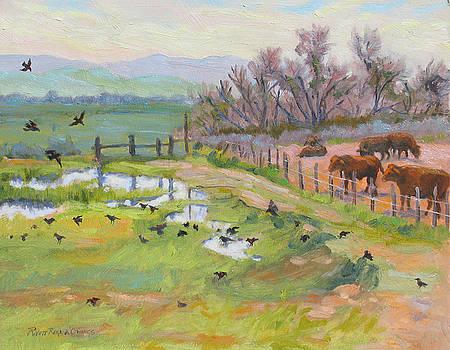 Evening Bath by Rhett Regina Owings