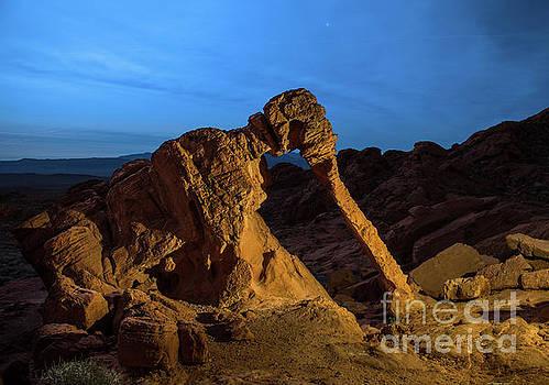 Evening Elephant Rock by Jamie Pham