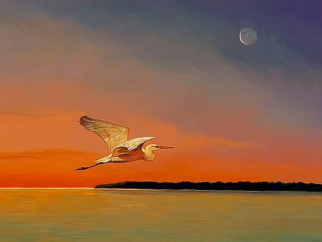 David  Van Hulst - Evening Flight