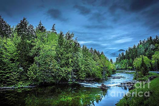 Evening Fog - Adirondacks, NY by Demi Buckley