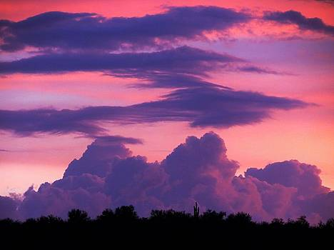 Evening Glow by Mistys DesertSerenity