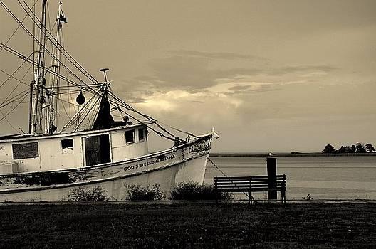 Susanne Van Hulst - Evening in the harbor