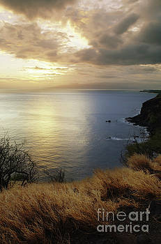 Charmian Vistaunet - Evening Light - West Maui