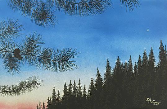 Evening by Martin Bellmann