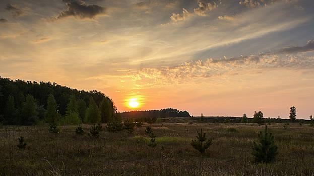 Evening meadow. Horytsya, 2014. by Andriy Maykovskyi