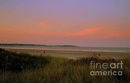 Evening On The Dunes by Lennie Malvone