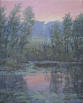 Evening, Pond by Stephen Howell