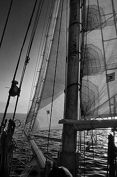 Evening Sail BW by David Cabana