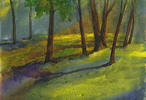 Evening Shadows by John Meng-Frecker