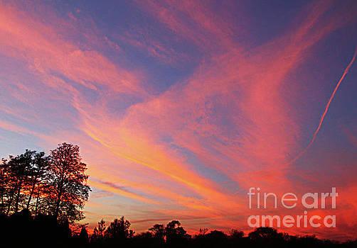 Evening Sky by Anna Sheradon