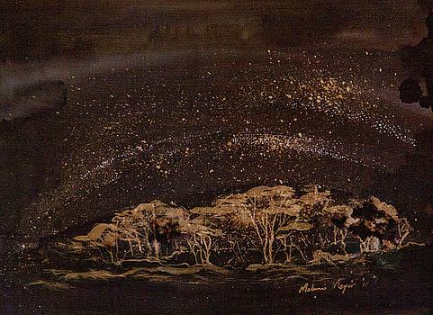 Evening Star Lights  02 by Melanie Meyer