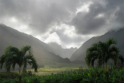 Reimar Gaertner - Evening storm clouds over West Maui mountains at Tropical Planta