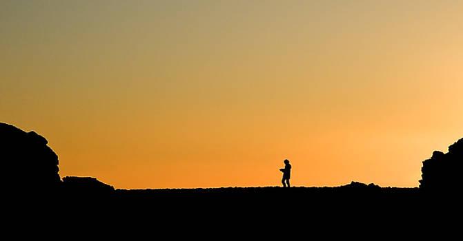 Evening Stroll by Gareth Davies