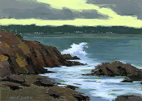 Evening Surf by Mary Byrom