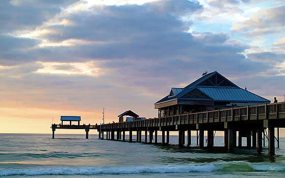 Sam Davis Johnson - Evening Tide in Clearwater
