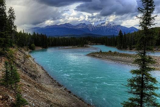Wayne Moran - Evening Walk Along the Athabasca - Jasper National Park