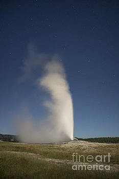 Evening With Old Faithful by Scott Wood