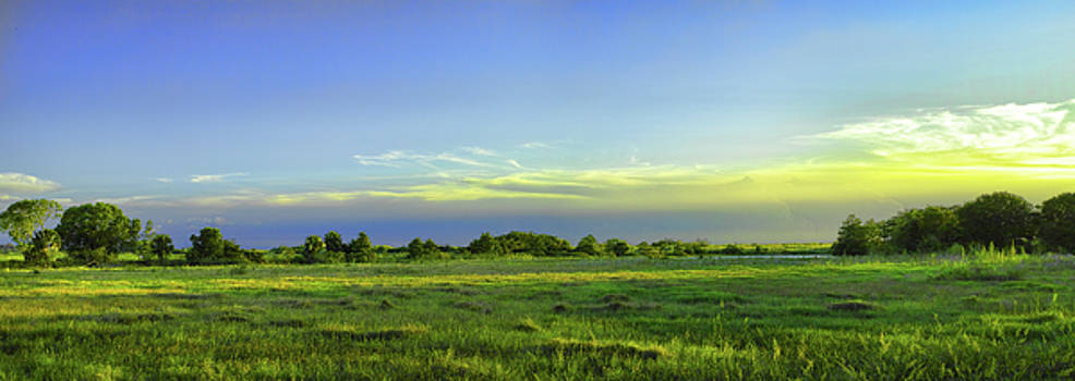 Everglades Panorama  by Roberto Aloi