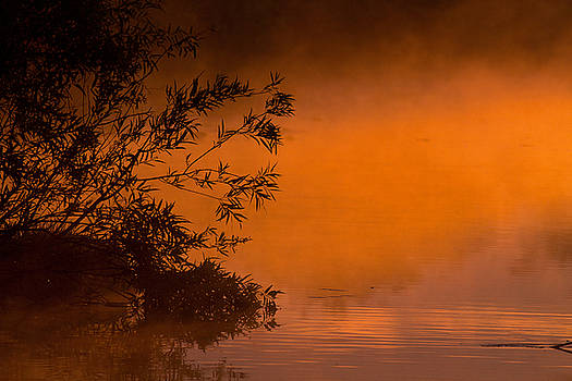 Everglades Sunrise by Larry Hughes