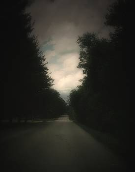 Evergreen Road by Cynthia Lassiter