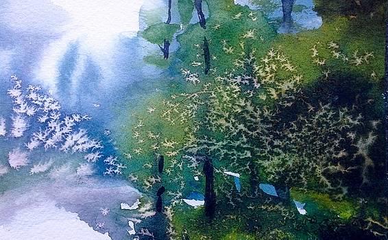 Evergreen by Sarah Guy-Levar