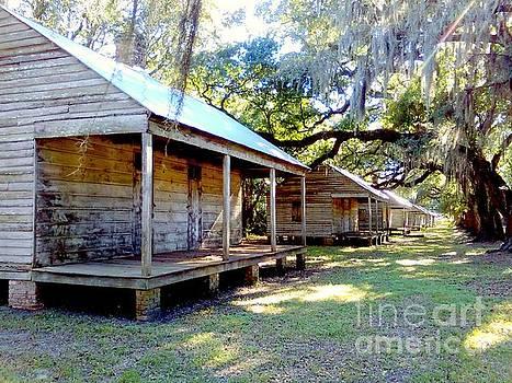 Evergreen Sugar Cane Plantation Slave Cabin Quarters In Wallace Louisiana by Michael Hoard