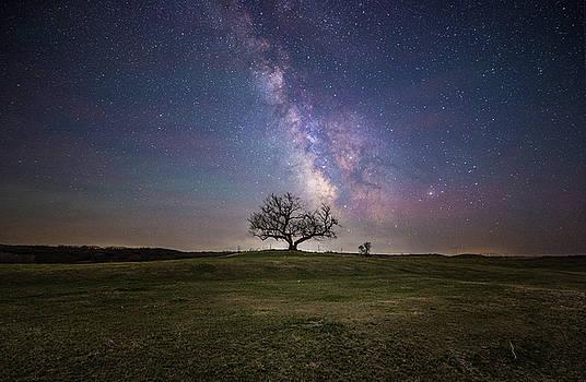 Everlong  by Aaron J Groen