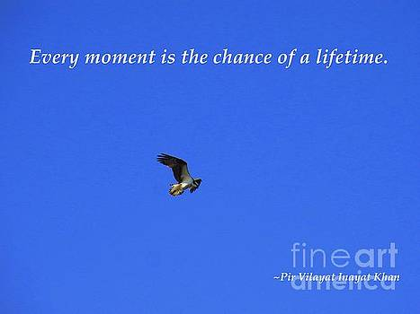 Every moment is the chance of a lifetime by Agnieszka Ledwon