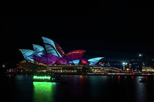 Everyone loves Sydney at Vivid Sydney Festival by Daniela Constantinescu