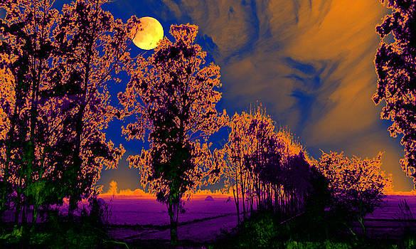 Bliss Of Art -  evocative night