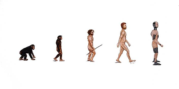 Evolution of Rob by Jennifer Lynch