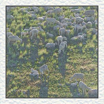 Ewes and Lambs - digital painting by Kae Cheatham