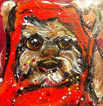 Ewok by Mary Gallagher-Stout