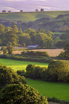 Exe Valley evening by Neil Buchan-Grant