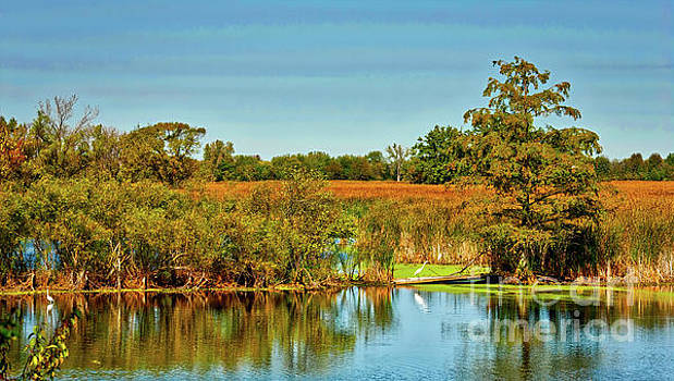 Exner Marsh Nature Preserve  by Tom Jelen