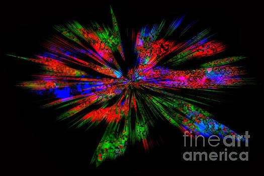 Exploding colors by Geraldine DeBoer