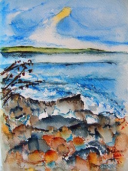 Explore the Shore by Elaine Duras