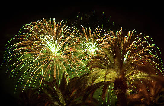 Explosive in Green Fireworks by Bonnie Follett