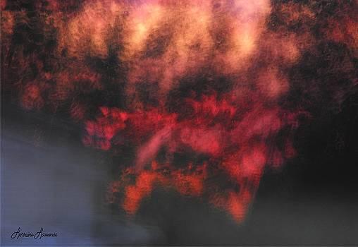 Explosive by Lorraine Louwerse