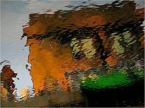Expressive Reflections  by Mirza Ajanovic