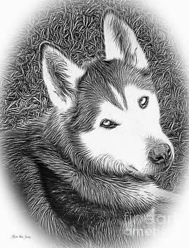 Expressive Siberian Husky Mixed Media A4617 by Mas Art Studio