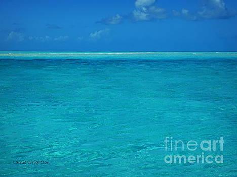 Exuma Blue Hues by Lainie Wrightson