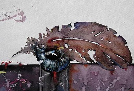 Eye Feather by Geni Gorani