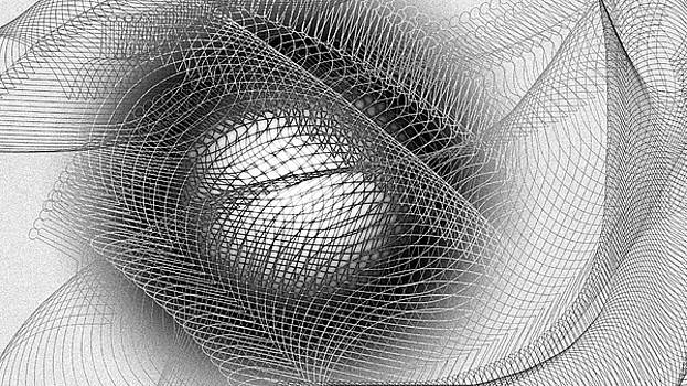 Eye Net by Constance Krejci