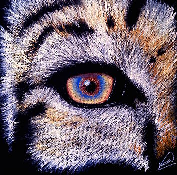 Eye of a Tiger by Alban Dizdari