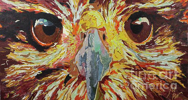 Eye Of The Beholder by Farid Musthafa