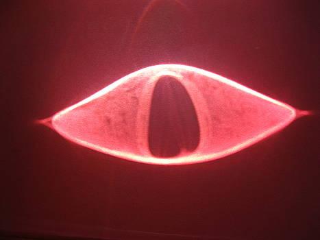 Eye of the Dragon by Sheldon Roberts