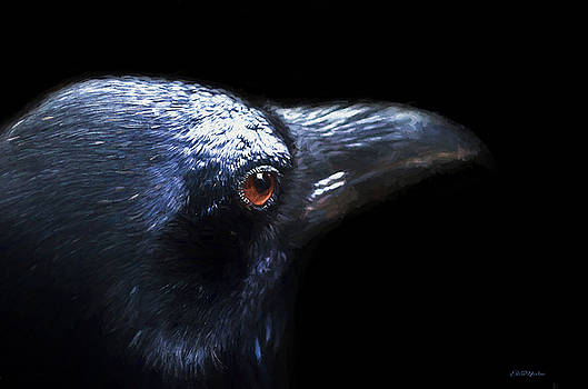 Eye of the Raven - Painting by Ericamaxine Price