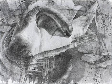 Eye of the Storm by Debbie Moore