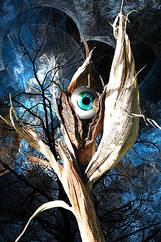 Eye-Pod 1 by Lisa Yount
